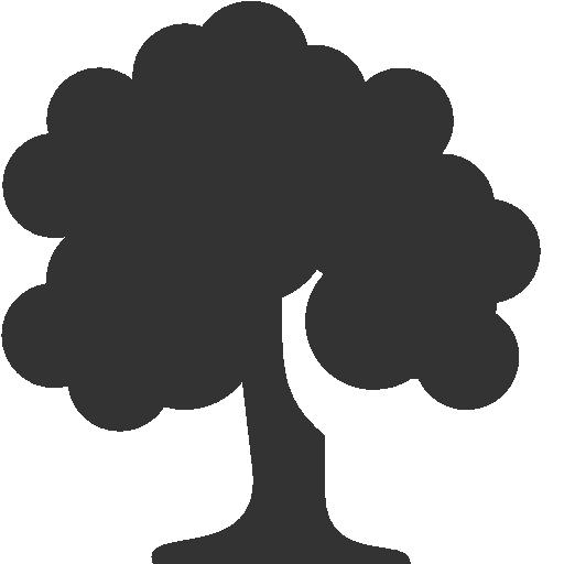 Lastentaxi, Lastentaxi Köln, Umzüge, Möbeltransporte, Kurierfahrten, Abholservice, Overnight Kurier, Baumpflanzen, Baum pflanzen, 1 Baum pro Kilometer, Klimaschutz, Klimaneutral, Green Economy, Grün ist besser, Verantwortung